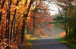 风景秋天的路 免版税库存照片