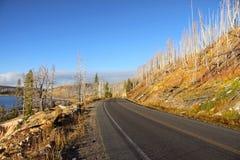 风景秋天的驱动器 库存照片
