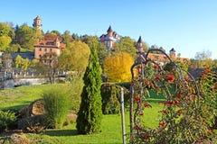 风景秋天观点的风景公园和荚莲属的植物, Buki,乌克兰 免版税库存照片