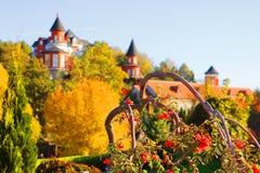 风景秋天观点的风景公园和荚莲属的植物, Buki,乌克兰 图库摄影
