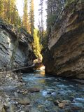 风景约翰斯顿峡谷足迹在班夫国家公园 免版税库存照片
