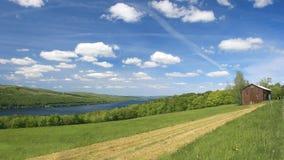 风景绿色牧场地的河沿 免版税库存照片
