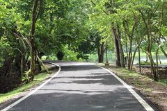 风景美丽的景色在交叉路路的有树和池塘的 库存照片