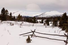 风景育空加拿大冬天山大农场篱芭 免版税库存图片