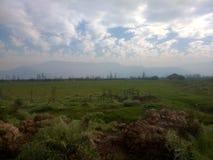 风景背景在领域牧场地2 免版税库存图片