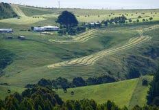 风景自然。农场。 库存图片