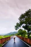 风景自行车路线在Chihshang,台东,台湾 免版税库存图片