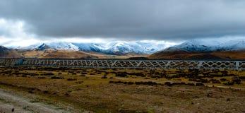 风景西藏 免版税图库摄影