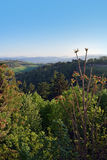 风景视图在波隆纳,意大利 免版税库存照片