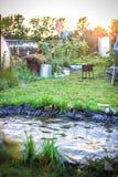 风景设计的池塘与摇摆和草 免版税库存照片