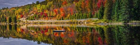 风景路在秋天森林里 库存图片