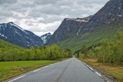 风景路线63在挪威 免版税库存照片