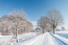 风景路通过领域和森林有轨道的在冰冷的s 图库摄影