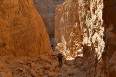 风景远足在犹太沙漠山 免版税库存图片