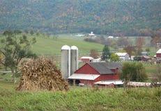 风景门诺派中的严紧派的农场 库存图片