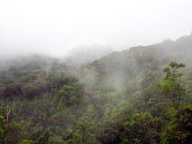 风景领域全景视图在山的 免版税库存照片