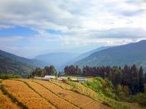 风景领域全景视图在山的 库存照片