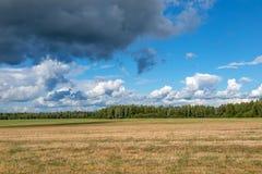 风景领域和云彩夏天 免版税库存图片