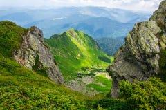 风景,旅行,旅游业 绿色山,树,草 水平的框架 免版税图库摄影