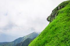 风景,旅行,旅游业 绿色山,树,草 水平的框架 库存图片