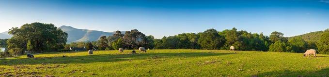 风景,湖区,英国 免版税图库摄影