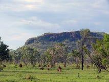 风景,自然。澳大利亚。 库存照片