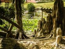 风景,越南, Muine 庭院的看法有池塘的 库存图片