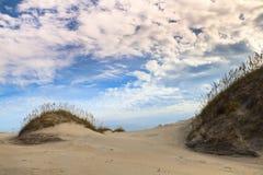 风景:海滩生态系统 库存图片
