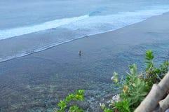 风景巴厘岛海岸风景 免版税库存照片