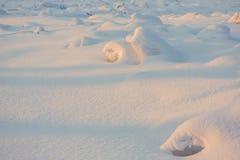 风景 天气,在前景的随风飘飞的雪 免版税库存图片