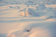风景 天气,在前景的随风飘飞的雪 库存图片