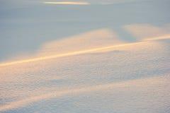 风景 天气,在前景的随风飘飞的雪 库存照片