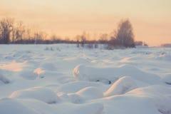 风景 天气,在前景的随风飘飞的雪 图库摄影