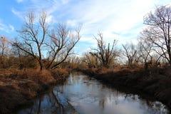 风景-有仍然植被的河没有叶子在早期的春天,欧洲自然 库存图片