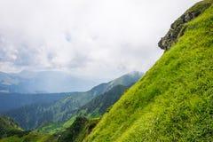 风景 绿色山,树,草 免版税图库摄影