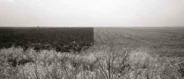 风景-自然对比 库存照片