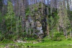 风景 taiga 西伯利亚的北部的河 俄国 库存照片