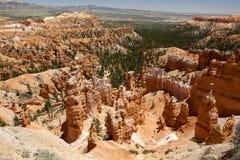 风景bryce的峡谷 免版税库存图片