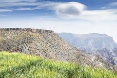 风景Jebel Akhdar阿曼 免版税库存照片