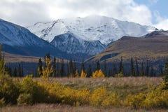 风景Kluane的国家公园,育空 免版税图库摄影