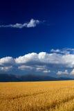 风景Liptov斯洛伐克 免版税库存照片