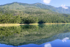 风景Mattupetty湖Munnar 库存图片
