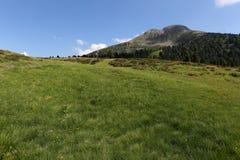 风景montain 免版税库存照片