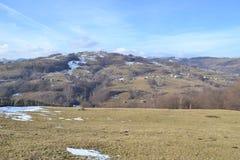 风景RăchiÅ£ele,罗马尼亚 库存照片