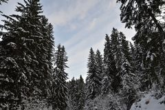 风景RIDANNA -意大利南蒂罗尔 免版税库存图片