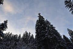 风景RIDANNA -意大利南蒂罗尔 免版税图库摄影