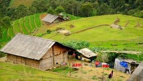 风景Sapa越南