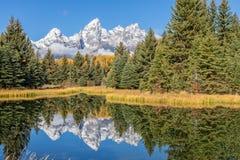 风景Teton秋天反射 图库摄影