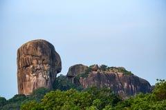 风景Yala国家公园,斯里兰卡 免版税库存图片