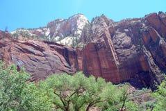 风景Zion视图 库存图片